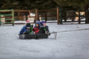 several small children being pulled in sled on snow